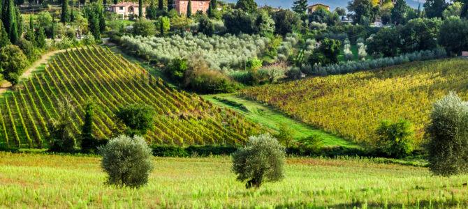 8 raisons de visiter l'Italie en automne